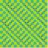 zelena iluzija